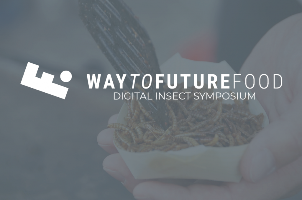 Foto Teaser Digital Insect Symposium