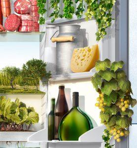 Kühlschrank_2